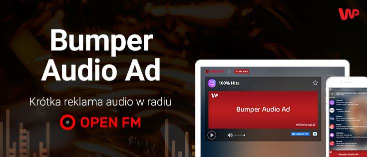 Bumper Audio Ad