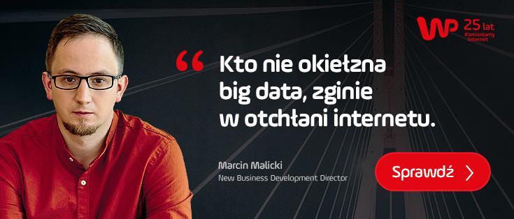 Kto nie okiełzna big data, zginie w otchłani internetu